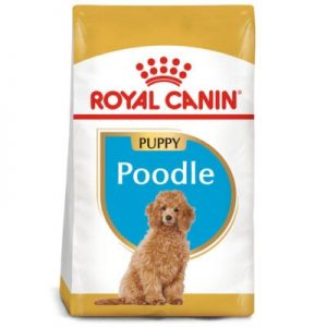 ROYAL CANIN Poodle Puppy